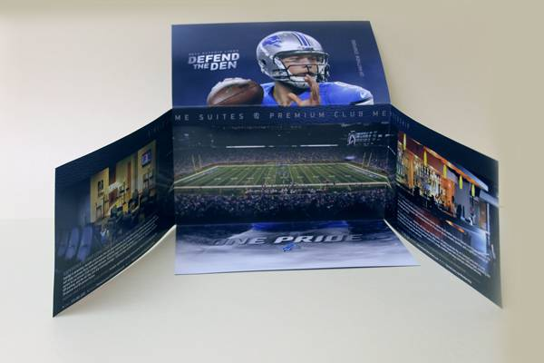 Tipping Pick and Place Michigan , Custom Packaging Design - Michigan Paper Die - lions